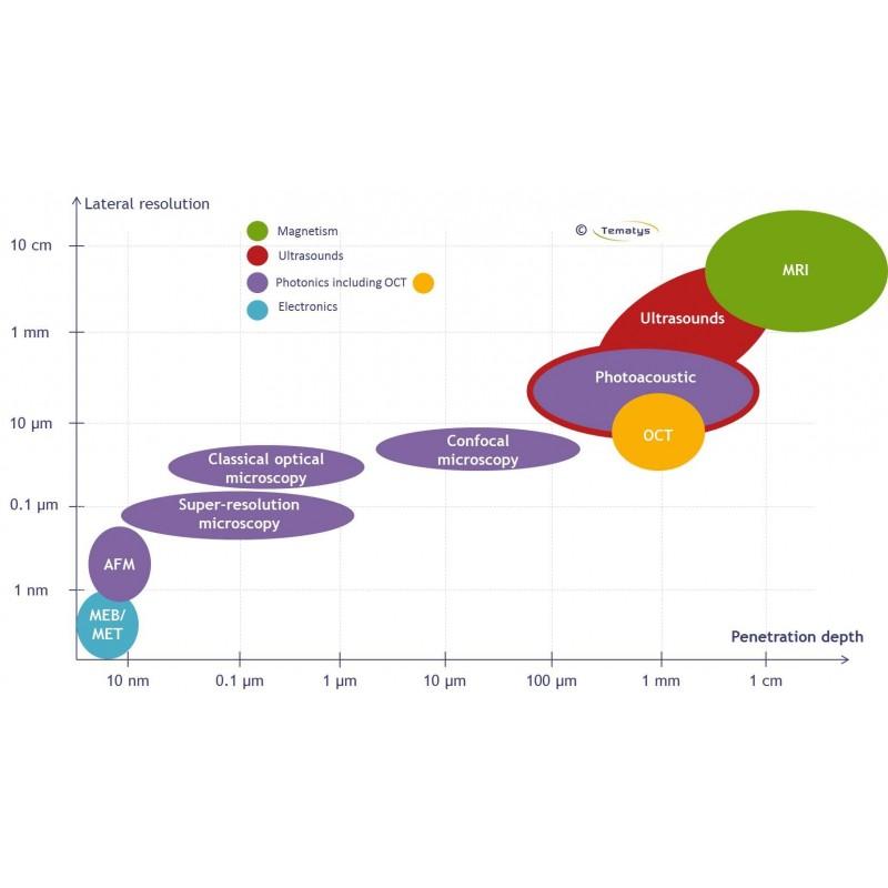 download Die Rolle des Volumens bei der Aktienkursprognose unter besonderer Berücksichtigung der AVAS